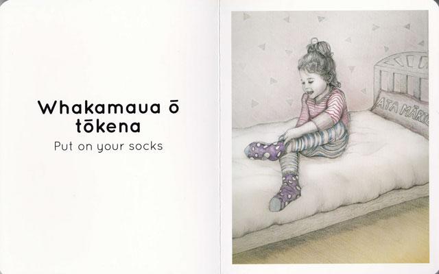 Kakahu-socks-2-web